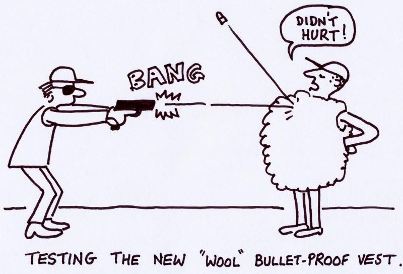 Bullet_proof_wool_200213 (800x543)