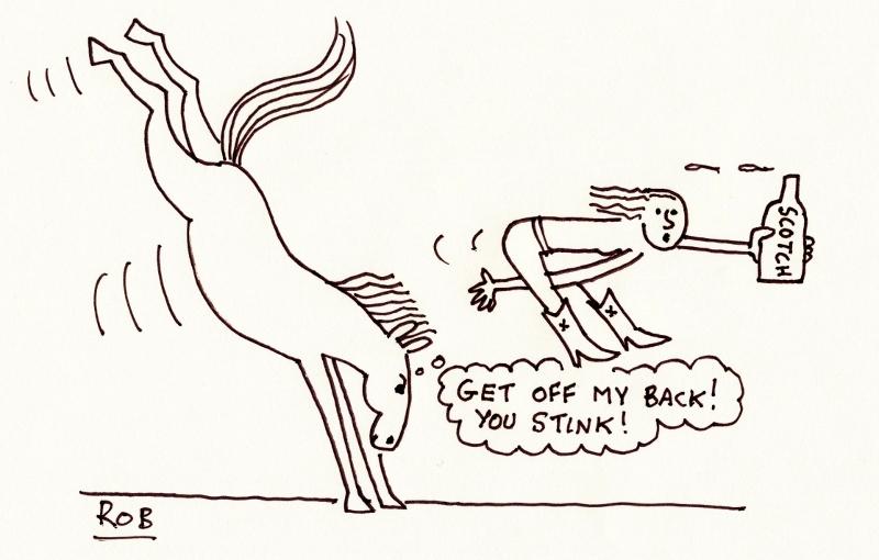 Horse (800x510)