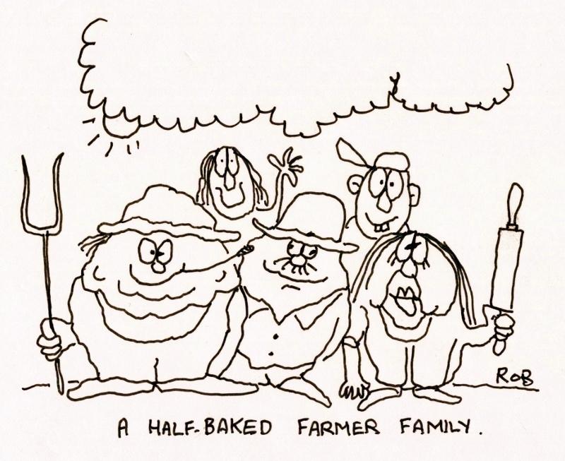 Half-baked (800x653)