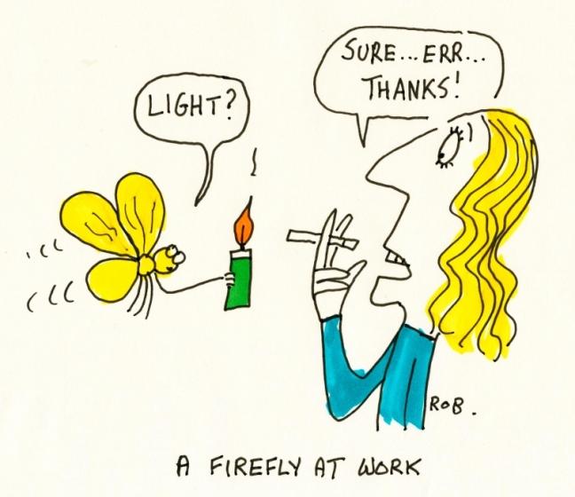 Firefly (800x692)