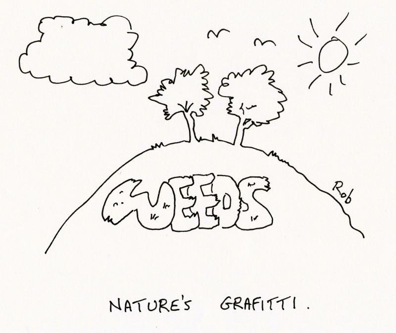 Naturegrafitti (800x672)