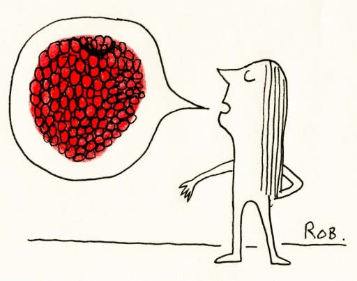 130114Raspberry (800x631)