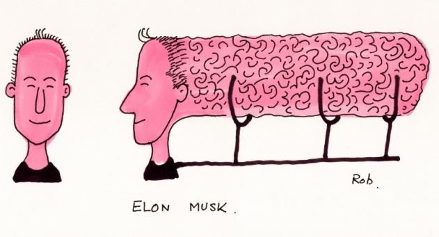 110115_Musk (800x433)