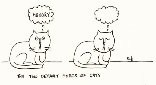 140615defaultcats (800x437)