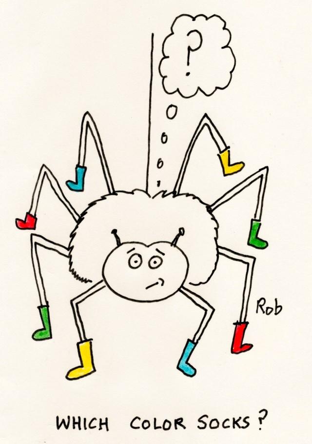 Nov15_spider